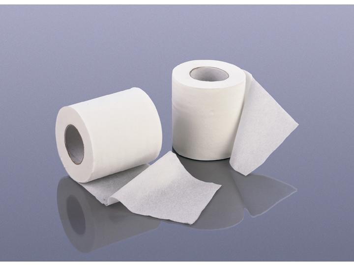 Diez curiosidades hist ricas del papel higi nico taringa for Accesorios para bano papel higienico