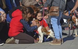 7º desfile AUPA - BIOPARC para fomentar la adopción - familia junto ELISA (1)