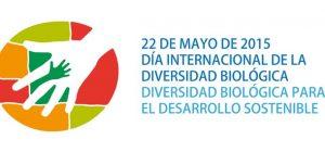 idb-2015-logo-es-imprimir